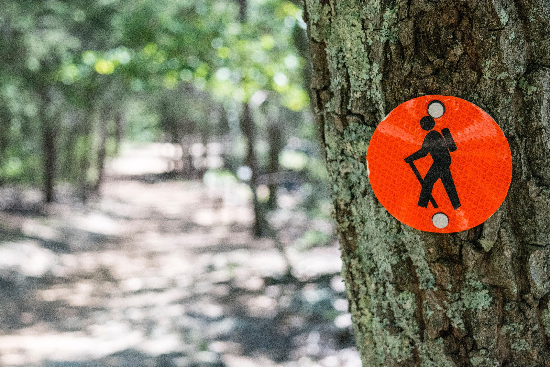 Hiking Signage on a Tree
